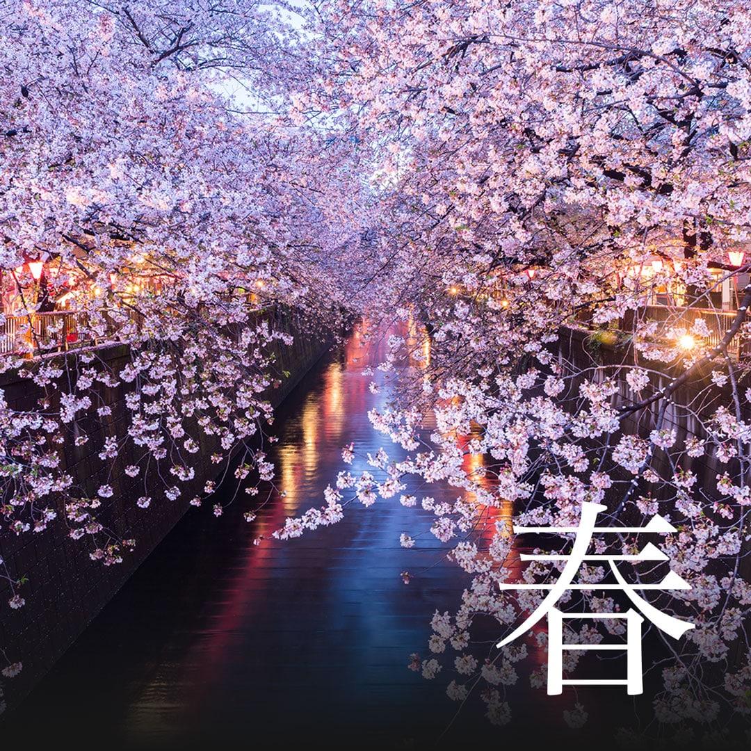 Spring Japanischer