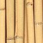 heller bambus
